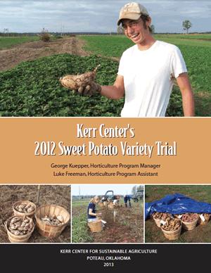Heirloom Variety Trial Report 2012: Sweet Potatoes