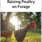 poultry-on-forage-cover