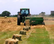 The True Cost of Hay
