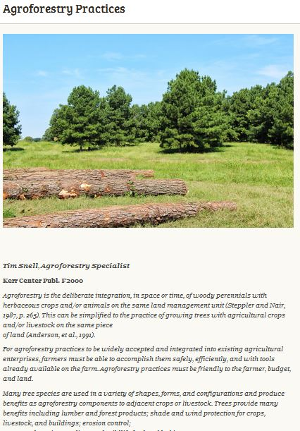Agroforestry Practices