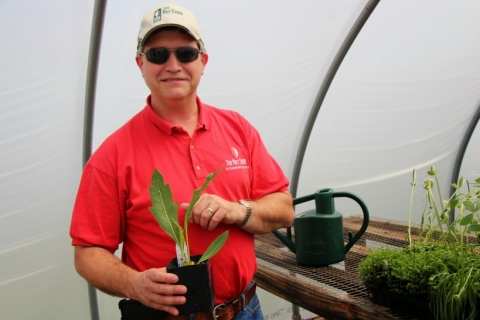 Pollinator Plant Propagation Guides