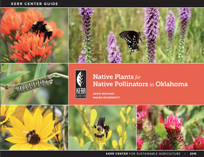 Native Plants For Native Pollinators In Oklahoma Kerr Center