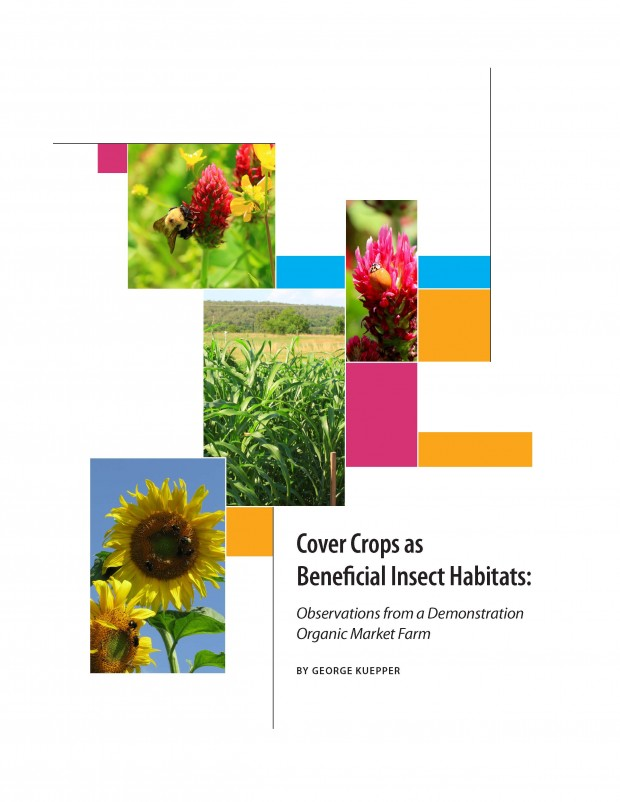 Cover Crops as Beneficial Insect Habitats