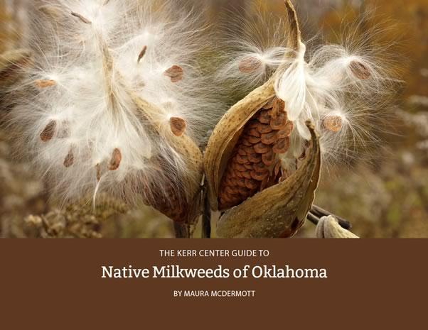 Native Milkweeds of Oklahoma