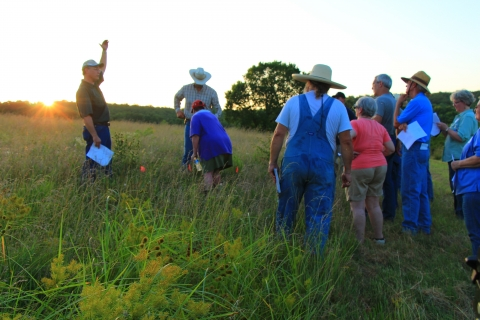 Pasture Plant Identification Workshop