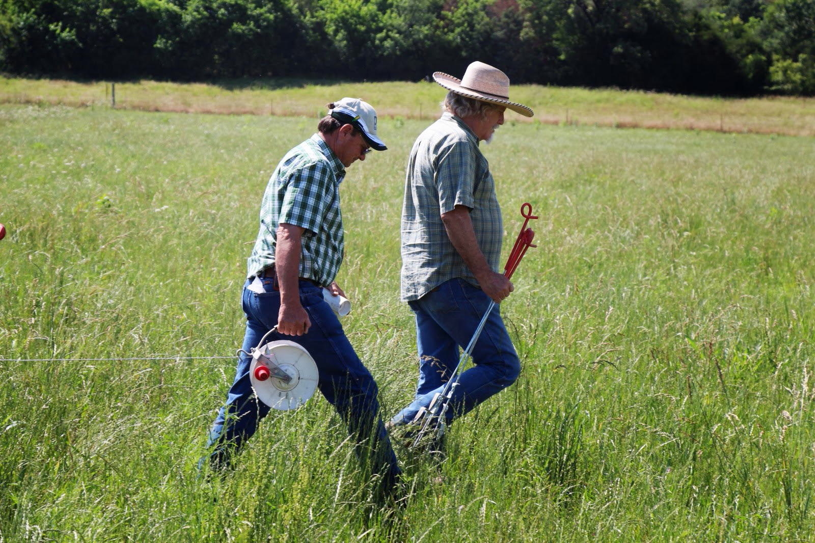 Will Lathrop and Student string electric fence in Kerr pasture.
