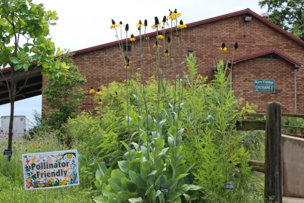 President's Note: Native Plants and Ecosystem Management