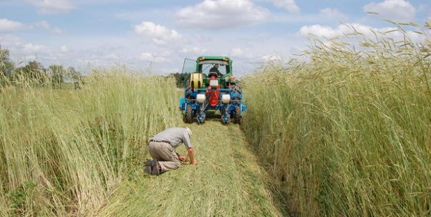 Grant Application Deadline: Southern SARE Producer Grants