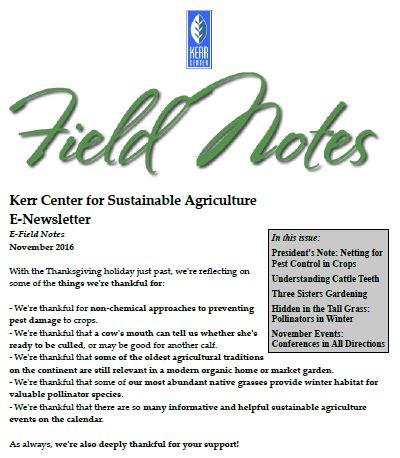 Field Notes – November 2016