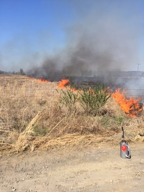Native Prairie Prescribed Burn