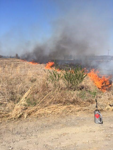 Native Prairie Prescribed Burn