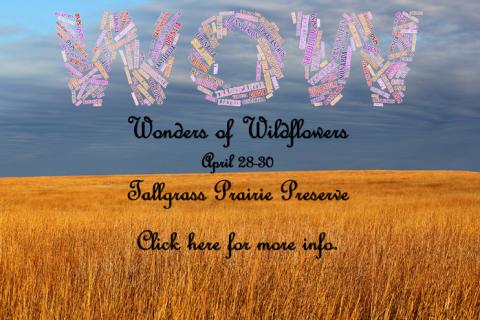 Oklahoma Native Plant Society Wonders of Wildflowers Weekend