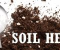 Extension Soil Health Field Days – August 2017