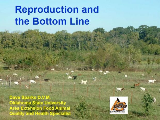 Reproduction and the Bottom Line