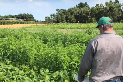 Green Cover Soil Health Field Day @ Bladen, NE (Green Cover Seed) | Bladen | Nebraska | United States