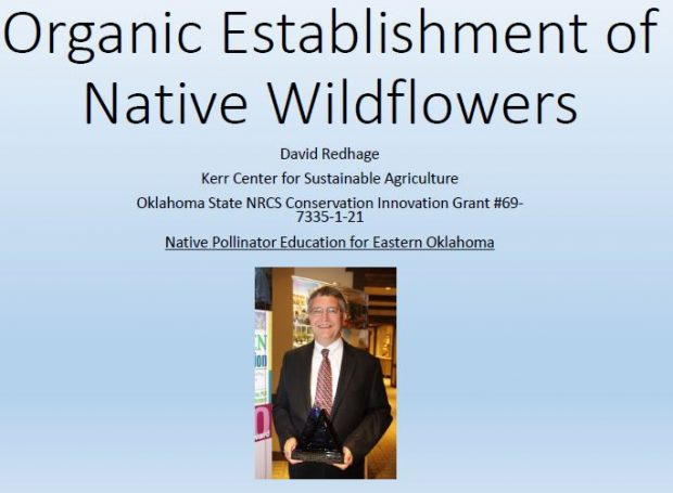 Organic Establishment of Native Wildflowers