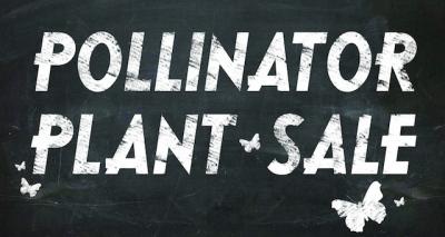 Pollinator Plant Sale @ Tulsa (Tulsa Zoo)   Tulsa   Oklahoma   United States