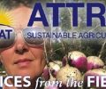ATTRA Podcast: Opportunities in Agroforestry