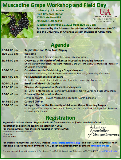 Muscadine Workshop and Field Day @ Clarksville, AR (UA Fruit Research Station)