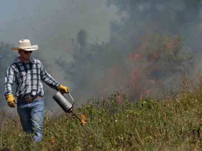 Field Day: How to Use Prescribed Fire for Wildlife and Livestock @ Marietta (Noble Research Institute, Coffey Ranch)