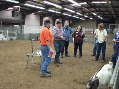 Meat Goat Boot Camp @ Ada (Pontotoc County Agri -Plex)