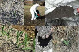Webinar:  Biochar Formulation as a Soil Amendment in the Agricultural, Forestry, and Environmental Sectors