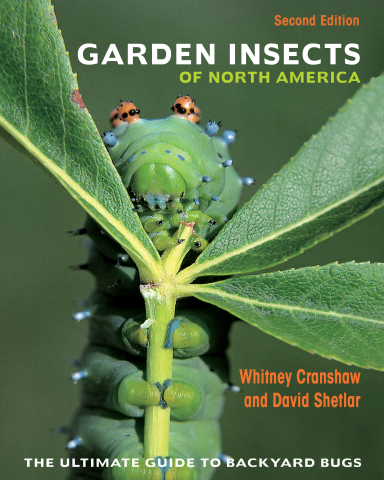 President's Note: Book Review: Garden Insects of North America