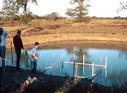 pond-landing