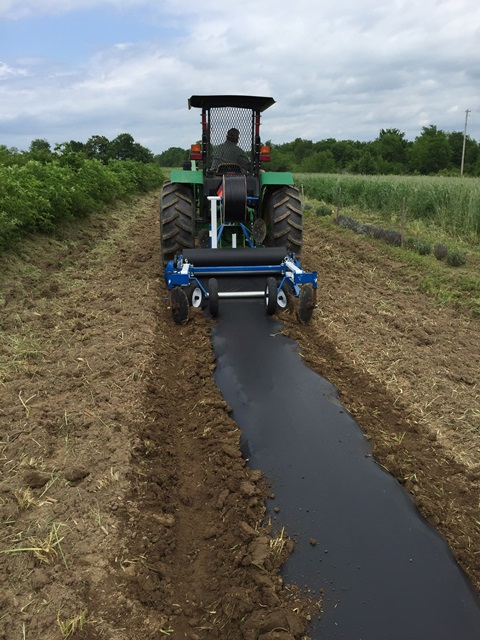 President's Note: Equipment and Timeliness in Planting Your Market Garden