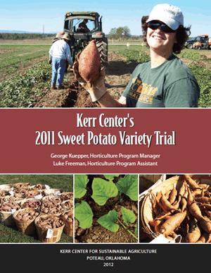 Heirloom Variety Trial Report 2011: Sweet Potatoes