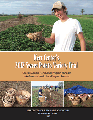 Heirloom Variety Trial Report 2012: Sweet Potatoes