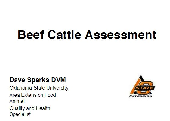 Beef Cattle Assessment