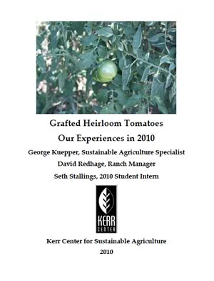 Heirloom Variety Trial Report 2010: Grafted Tomatoes