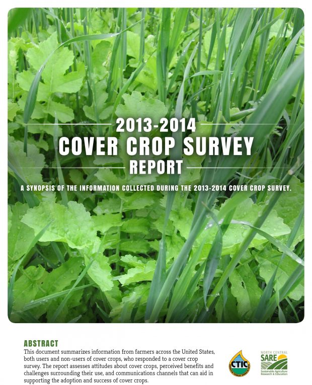 Cover Crop Report Documents Yield Boost, Soil Benefits