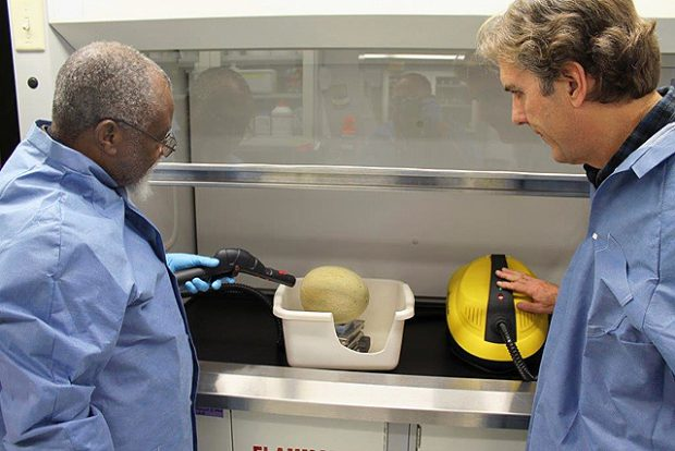 Making Melons Safer with Steam
