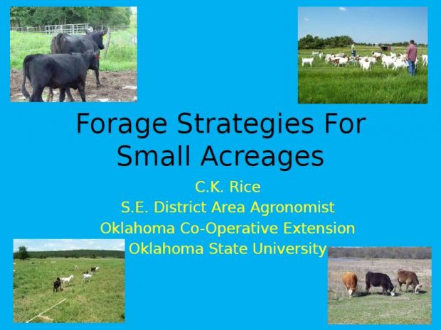 Forage Strategies for Small Acreages
