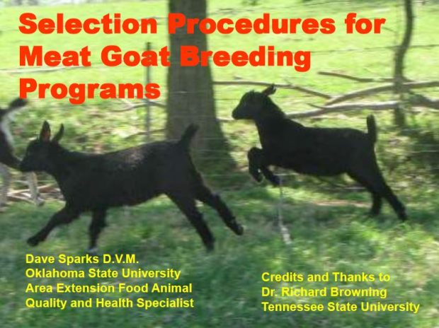 Selection Procedures for Meat Goat Breeding Programs