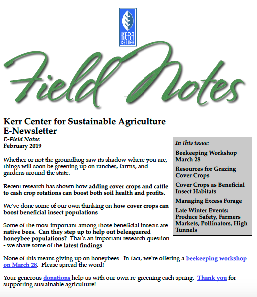 Field Notes – February 2019