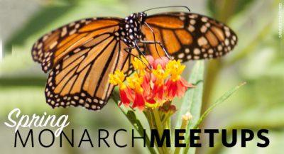 CANCELED: Monarch Meetup: Elk City @ Elk City (Carnegie Hall)