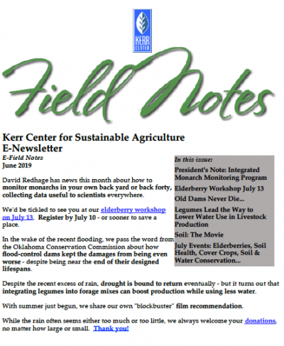 Field Notes June 2019