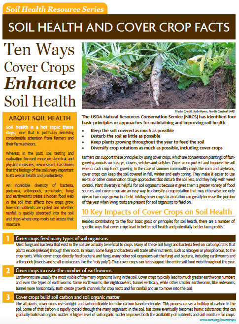 New Fact Sheets: Ecosystem Services of Cover Crops