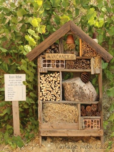 Family Workshop: Insect Hotels @ Oklahoma City (Myriad Botanical Gardens, Park House Event Center)