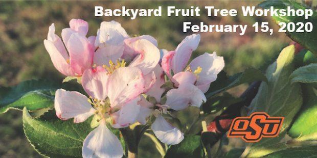 Backyard Fruit Tree Workshop