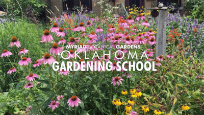 Oklahoma Gardening School @ Oklahoma City (Oklahoma City University)