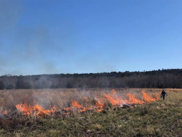 Prescribed Fire Resources and Training