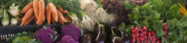 Application Deadline: Farmers Market Promotion Program (FMPP)