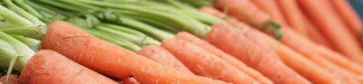 Application Deadline: Local Food Promotion Program (LFPP)
