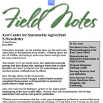Field Notes June 2020