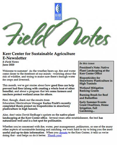 Field Notes June 2020