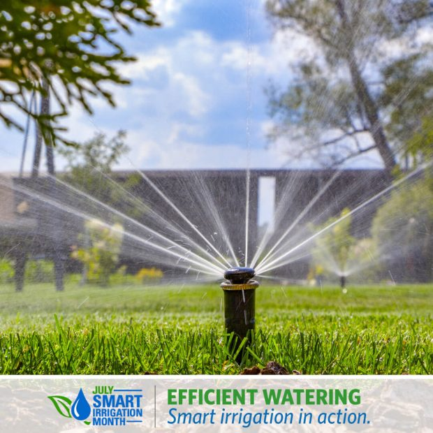 Irrigation Technology for the Home Landscape